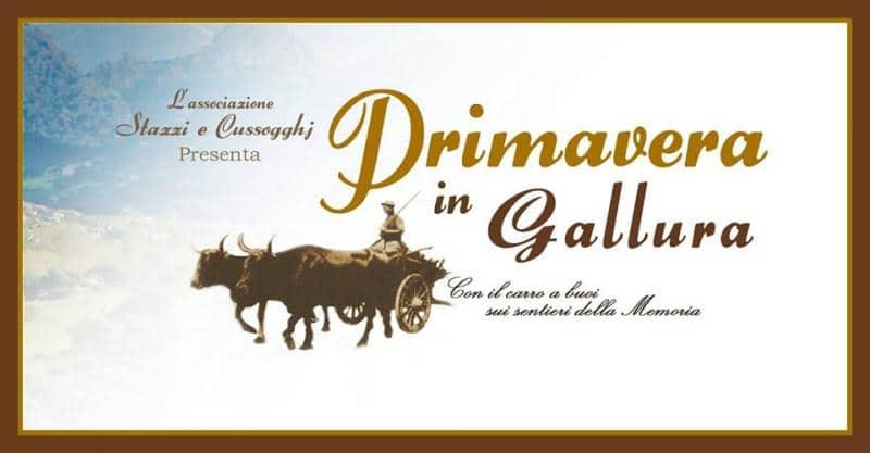20210806130531Primavera_In_Gallura_A_Aglientu.jpg