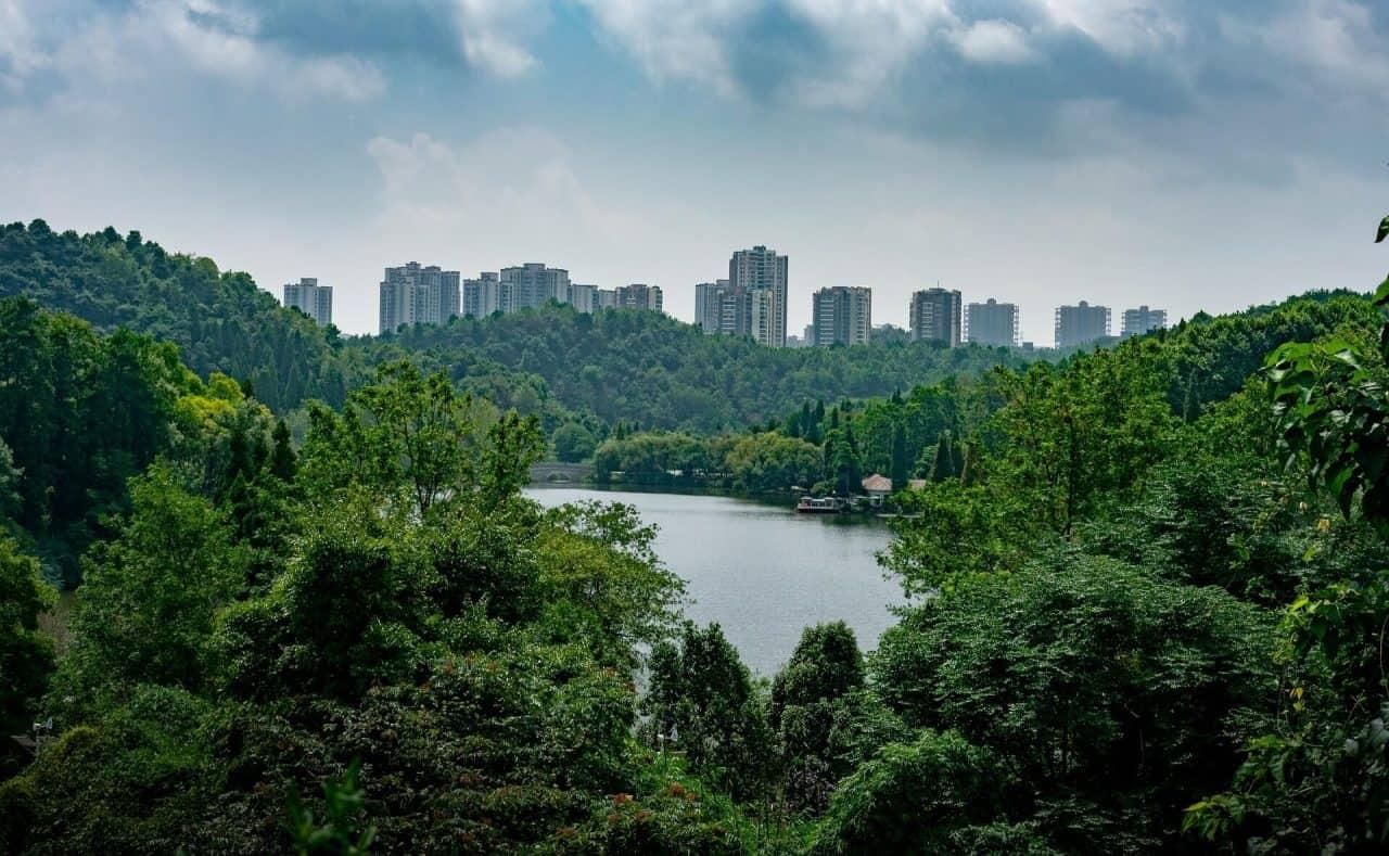 20210831154523foreste-urbane-forestami-1280x789.jpg